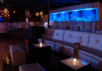Best Latin Dance Clubs in NJ Perle Night Club