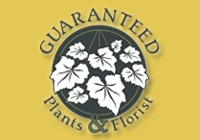 Guaranteed Plants plant rentals in NJ