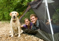 Panther Lake Camping Resort Pet Friendly Camping in NJ