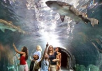 Top Attractions in Camden County New Jersey