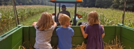 Fun Farms for Kids in NJ