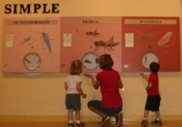 Insectropolis is a great educational kids attraction