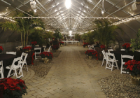 Beneduce Vineyards best party places in New Jersey
