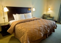 Best Cheap Hotels in NJ