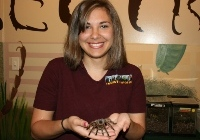 Insectropolis best attractions for young kids in NJ