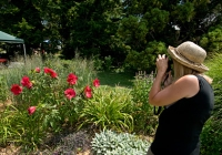 Rutgers Gardens best free attractions New Jersey