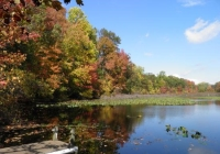 Tenafly Nature Center New Jersey best free attractions