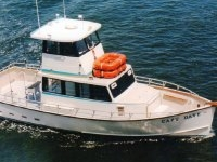 Capt. Dave Charter Boats Monmouth County New Jersey Attractions