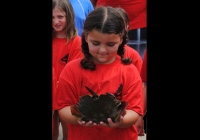 The Center for Aquatic Sciences at Adventure Aquarium Summer Camp in South Jersey