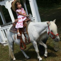 Decorated Ponies for Your Party nj ponies for rent