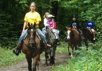 Elite Equine Ground Places to go Horseback Riding in NJ