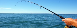 Best Fishing Spots in NJ