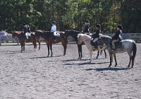 Forest Edge Farm Horseback Riding Lesson Camps in Central NJ