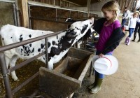 Fulper Family Farmstead play places for kids in Central NJ
