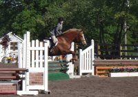 Hasty Acres horseback riding lessons in NJ