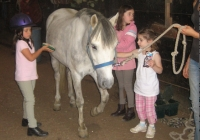 Hunter Brook Horse Farm toddler parties NJ