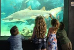 Point Pleasant Boardwalk & Aquarium Central NJ Party Places for kids