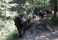 Legends Riding Stable horseback riding Sussex County NJ