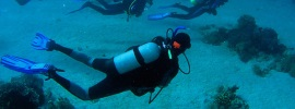 Cool NJ SCUBA Lessons