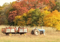 Snyder's Farm best family friendly attractions in Somerset County NJ