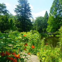 Somerset County Tourism Garden and Aboretum Tours in Central NJ