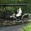 Stockton Carriage Tours for NJ weddings
