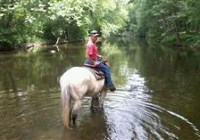 Top View Riding Ranch Horseback Riding in Northern NJ