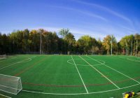Total Turf Experience Best Sports Complexes in Southern NJ