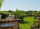 Turdo Vineyards and Winery Award Winning Wineries in Cape May NJ