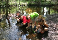 Woodford Cedar Run Wildlife Refuge Summer Camps for Kids in Middlesex County New Jersey