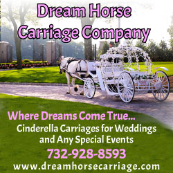 Dream Horse Carriage Horse & Carriage Services in NJ