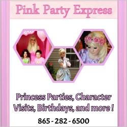 Pink Party Express Princess Parties in NJ