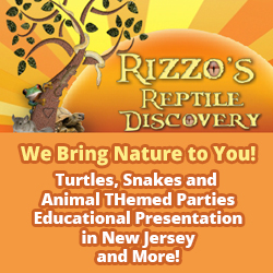 Rizzo's Wildlife Discovery Face Painting Parties NJ
