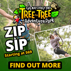 Tree to Tree Adventure Park Fun with Kids in NJ