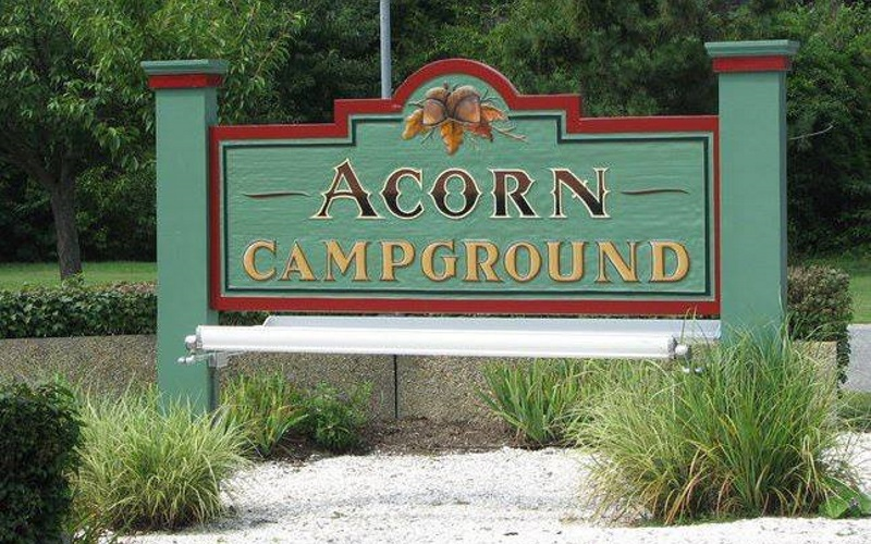 Photo of Acorn Campgrounds' front sign and logo on a green background with clumps of ornamental grass growing under it