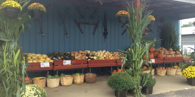 Photo a farm market with flowers and vegetables in New Jersey.