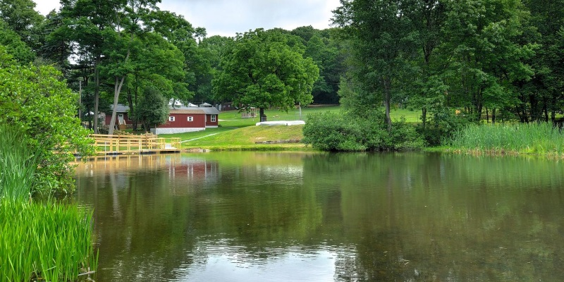 Photo a cabin sitting on a lake surrounded by lush green foliage in Randolph New Jersey.
