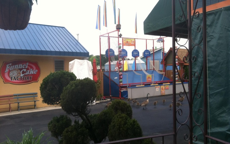 Clementon Park and Splash World is an all ages amusement park in Southern NJ.
