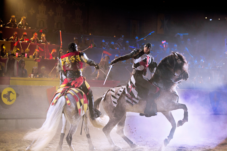 Medieval Times Dinner & Tournament Best Things to do with Kids in NJ