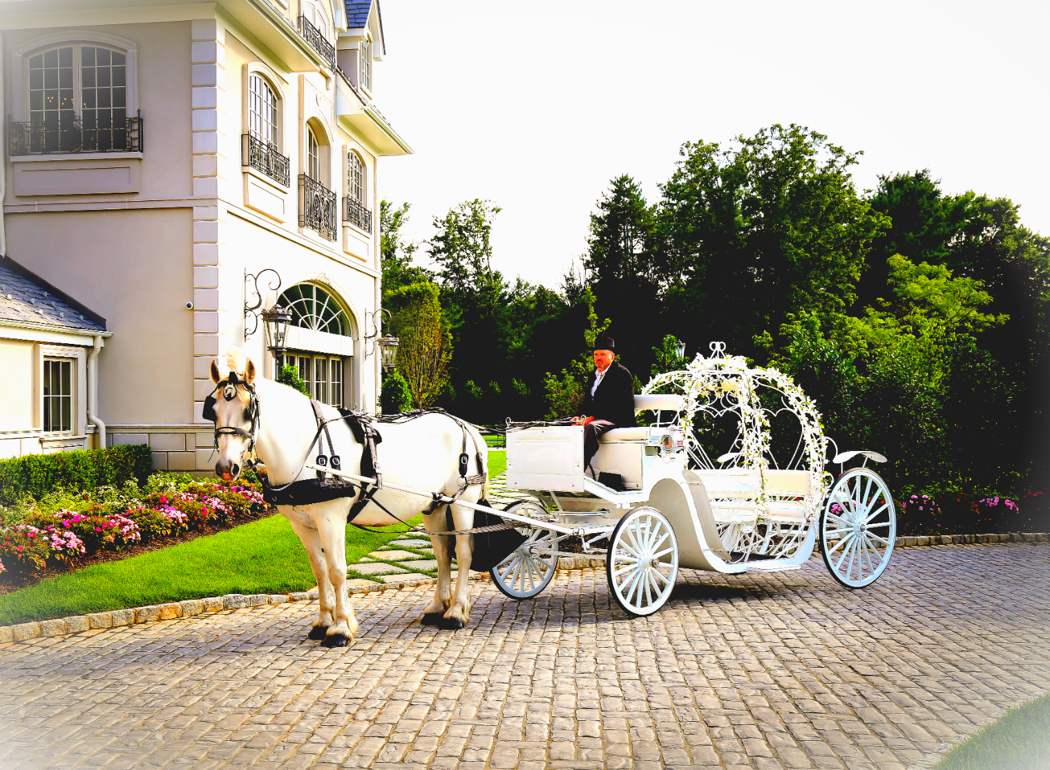 Dream Horse Carriage at Happy Tales NJ