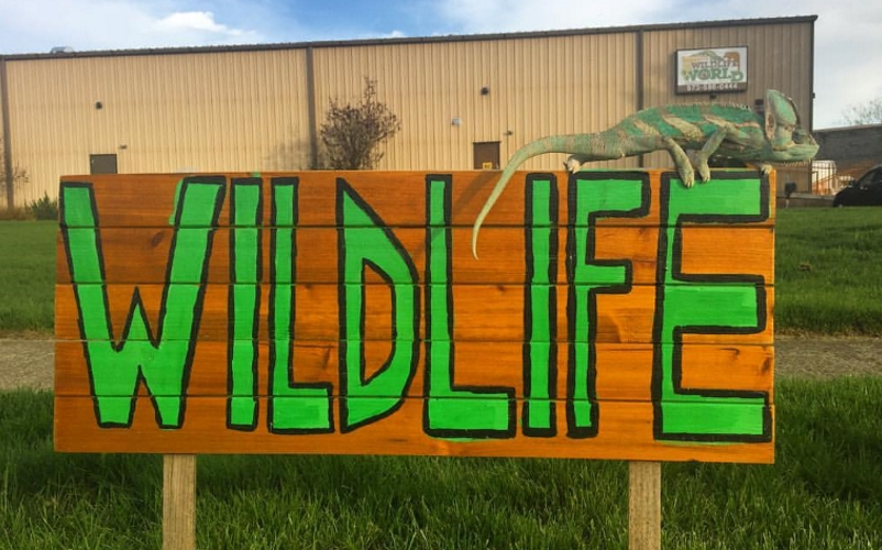 Rizzo's Wildlife World Animal Science Parties in NJ Northern NJ