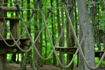 Image of a ropes course high in the trees as part of an adventure park in NJ