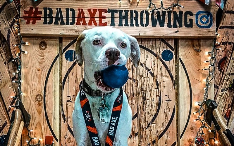 Image of Bad Axe Throwing at Matawan NJ