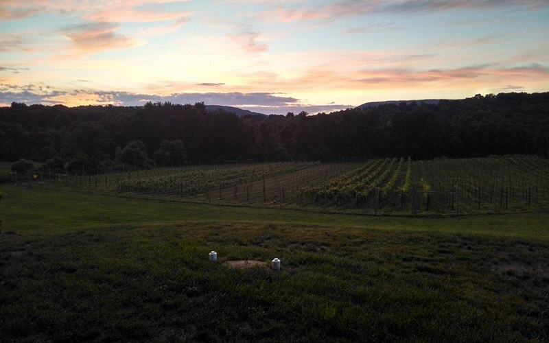 Image of a sunset over rolling farm land.