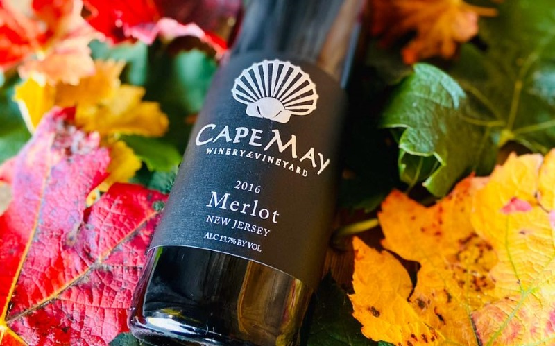 Image of a wine bottle on colorful leaves