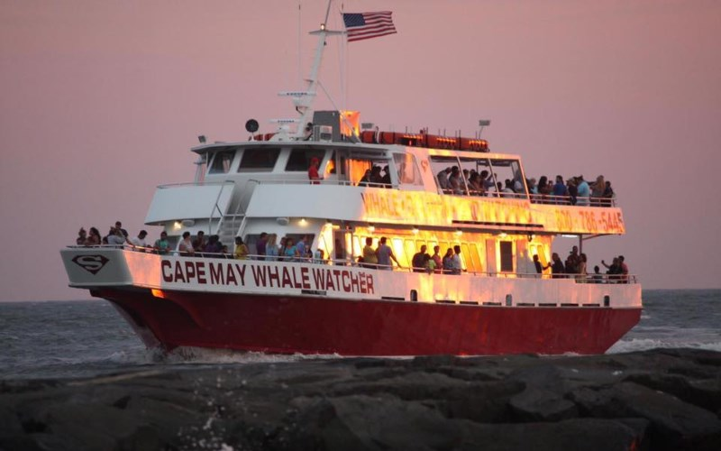 Cape May Whale Watchers unique sightseeing cruises in NJ