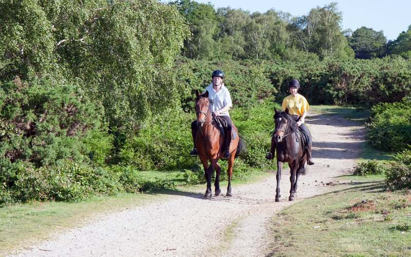 Elite Equine Group at Garret Mountain Equestrian Center guided horseback trail riding in NJ
