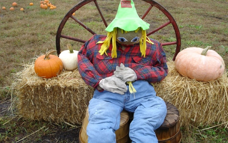 Fairfield Farms Family Fun Halloween Events Fairfield NJ