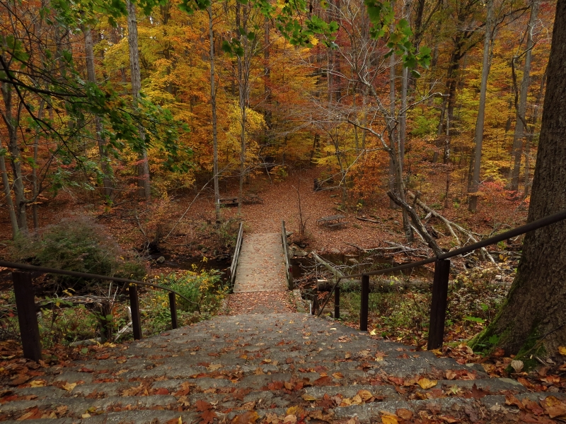 Hacklebarney State Park Fall Getaways Central Jersey