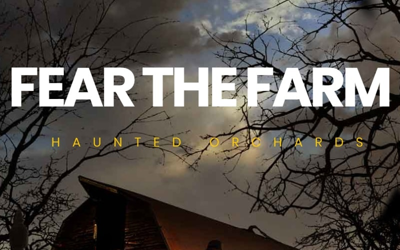 Haunted Orchards at Demarest Farms Halloween Attractions in NJ